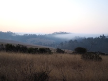 Early morning fog wafting over the hills near San Simeon State Park