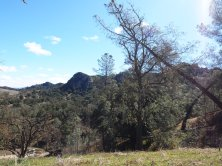 Big views along the trail